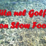 Giornata d'Amare: crociera nel Golfo con Slow Food